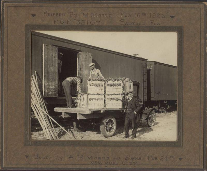 Celery Shipment Loaded on Railcar