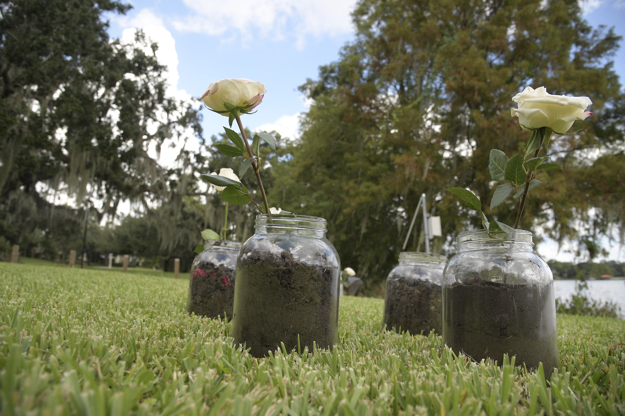 Central Florida Remembers 1920 Election Day Lynching Of: Glass Jars With White Roses · RICHES