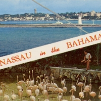 Nassau in the Bahamas Postcard