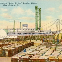 "The Famous ""Robert E. Lee,"" Loading Cotton Postcard"