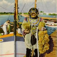 Sponge Diver and Sponge Boat Postcard