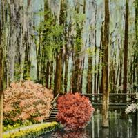 a postcard depicting cypress gardens in moncks corner south carolina the land was originally part of the dean hall rice plantation in 1750