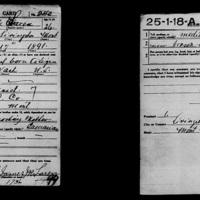 Draft Registration Card, 1917-1918<br />