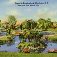 Scene in Hampton Park Postcard
