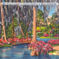 a postcard depicting the an azalea fringed lagoon in cypress gardens billed as floridas first commercial tourist theme park cypress gardens opened on