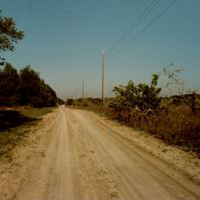 Mitchell Hammock Road Unpaved