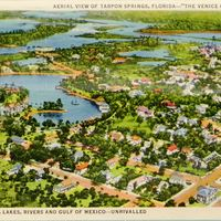 "Aerial View of Tarpon Springs, Florida—""The Venice of the South"" Postcard"