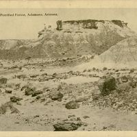 In First Petrified Forest Postcard