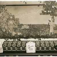 Isleworth Grove Citrus Display at the  New York World's Fair