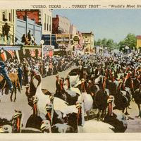 Turkey Trot Postcard