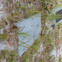 Headstone of Mae Summerlin at Viking Cemetery