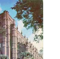 Cathedral of St. John the Baptist Postcard