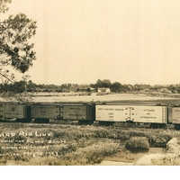 Seaboard Air Line Railroad Train in Black Hammock
