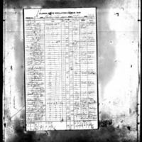 Fricks_1945 Census.jpg