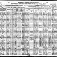 1920 Census Jackson.jpg
