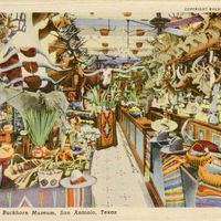 The Famous Buckhorn Museum Postcard