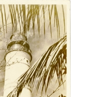 Only Lighthouse in U.S. Within City Limits - Key West Postcard