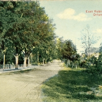 East Robinson Ave. Postcard