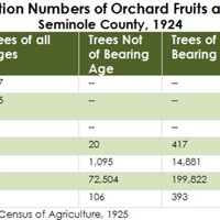 Production Numbers of Orchard Fruits and Nuts, Seminole County, 1924