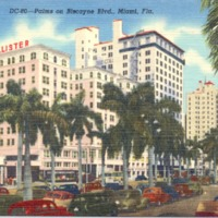 Palms on Biscayne Blvd. Postcard